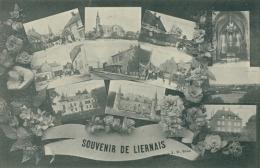 """21 LIERNAIS / """"Souvenir De Liernais"""" / - France"""
