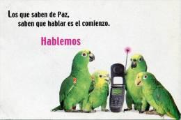 Lote PEP931, Colombia, Postal, Postcard, Loros, Bird, Parrot, Avantel - Colombia