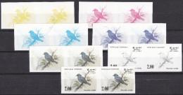 -> Epreuves De Couleurs Progressive Du Sri Lanka : Oiseau Dusky Blue Flycatcher