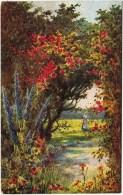 "Tuck's ""Cottage Gardens"" No. 9695 - Postcards"
