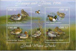 Ireland 1027a Ducks Souvenir Sheet MNH      I DO NOT ACCEPT PAYPAL