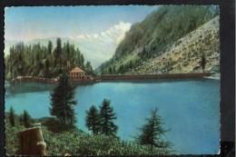 P4005 DIGA, Dam, Barrage, Damm, Digue - CODELAGO ( Verbania ) Parco Naturale Dell'Alpe Veglia E Devero - 1954 - Otras Ciudades