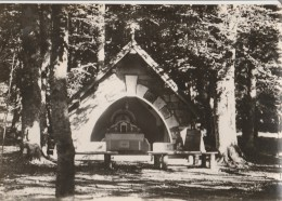 20 - VIZZAVONA - 9202 - La Chapelle Au Col De V. - Non Classés