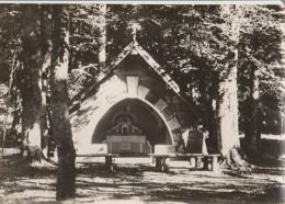 20 - VIZZAVONA - 9202 - La Chapelle Au Col De V. - Frankrijk