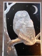CP - Postcard - DUFEX - Tawny Owl - Strix Aluco. - Birds