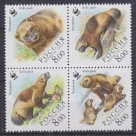 Russia 2004 WWF / Bear 4v ** Mnh (26888A) - W.W.F.