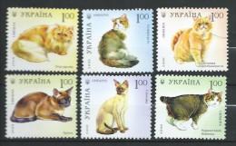 Ukraine 2008 Mi - 967/972.Cats,Chats.MNH - Ukraine