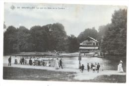 Belgique - Bruxelles - Bois De Cambre Le Lac Animée - Bossen, Parken, Tuinen