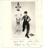 DAVID BOWIE . 1975 - Personalidades Famosas
