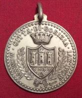 MEDAGLIA  CITTA´ DI GORIZIA 9 AGOSTO 1916 CINQUANTESIMO ANNIVERSARIO - D.3,5 Cm ARGENTO PUNZONE 800 IN ELEGANTE ASTUCCIO - Professionali/Di Società