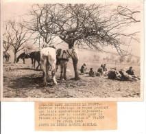 Original De Photo D'un Envoyé Spécial Ww2 Derriére Le Front En 1940 Autorisation Officielle De La Censure - Historical Documents