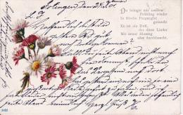 """AK Blumen Frühlingsblumen - """"Du Bringst Mir Meinen Frühling Wieder... - 1901 (20946) - Blumen"""