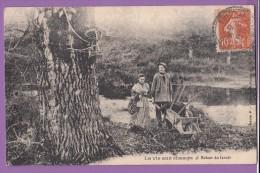 Campagne La Vie Aux Champs Retour Du Lavoir - Postcards