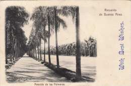 RECUERDO DE BUENES AIRES - Avenida De Las Palmeras, Gel.190?, 6 Centavos Frankierung, Karte Unten Eingerissen - Argentinien