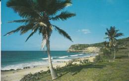 AMERIQUE---ANTILLES---PUERTO RICO---EL GUAJATACA---puerto Rico's Seashore Resort Directhy.....--voir 2 Scans - Puerto Rico
