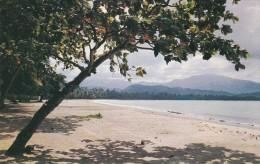AMERIQUE---ANTILLES---PUERTO RICO--luquillo Beach With El Yunque Puerto Rico's--voir 2 Scans - Puerto Rico