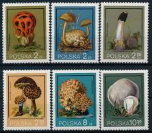 Poland Polen Mushrooms Pilze Set (6) °BM0672 MNH - Pilze