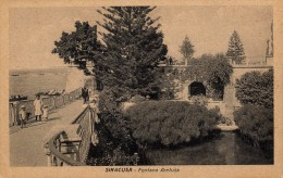 SIRACUSA - FONTANA ARETUSA ANIMATA - Siracusa