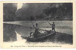 Lozère - Gorges Du Tarn - Traversée D'un Troupeau Au Cirque Des Beaumes - France