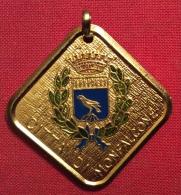 MEDAGLIA    CITTA' DI MONFALCONE 1982  IX COPPA CADUTI DELLA RESISTENZA VII TROFEO A.CICCHITTI  - D.3,5x3,5 - Professionali/Di Società