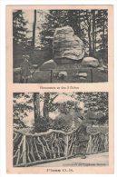 AT105     Principato Di PLESS O.-S.  - Furstenstein An Den3 Eichen - Landschaft Am Lonkauer Damm - Cartes Postales