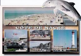 Cp Cote De NACRE- Multi Vues-dauphin Découpé - Dauphins