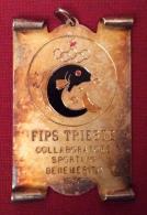 MEDAGLIA TRIESTE F.I.P.S. 1980 Collaboratore Sportivo Benemerito - Professionali/Di Società