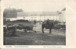 SENZEILLES : Vue De La Grand'Place - RARE CPA - SUPERBE ANIMATION - Cachet De La Poste 1906 - Cerfontaine