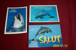 LOT  3 CARTES POSTALES   THEMES  DES  DAUPHIINS  °°  DAUPHINS  AVEC LEGENDE - Pescados Y Crustáceos