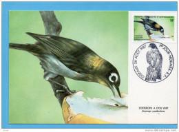 Nouvelle Calédonie -CARTE MAXIMUM-oiseaux--zosterops à Dos Vert - N° 542 Obli 26 Aout 1987 - Briefe U. Dokumente