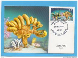 Nouvelle Calédonie CARTE MAXIMUM- Fossile Vivant-glyphidodontops Cyaneus -N°557 Oblt Juin 1988 - Briefe U. Dokumente