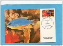 Nouvelle Calédonie-2 -CARTE MAXIMUM- Poisson-pomacanthus  +glyphidodops- 1988 Tp N°551-2oblitération  Mars 1988 - Briefe U. Dokumente