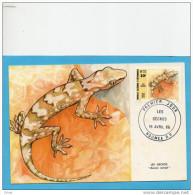 Nouvelle Calédonie  2-CARTES MAXIMUM-Animals- Lézards-geckos- 1986 N°516-7 - Briefe U. Dokumente