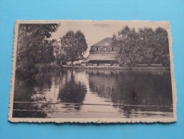 OVERMERE Donk Zicht Op Het MEER ( D'Hooge-Suy ) Anno 19?? ( Zie Foto´s Voor Details ) !! - Berlare