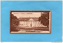 "Chromos-Chocolat ""SUCHARD"" -DANEMARK-Chateau D'Odense  N°54 - Suchard"