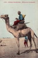 Soudan    Méhariste Soudanais - Soudan