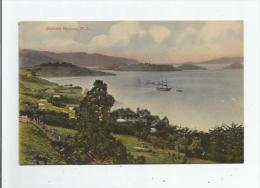 DUNEDIN HARBOUR 1037  , N Z 1908 - Nouvelle-Zélande