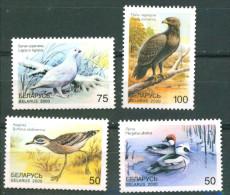 Belarus 2000 Birds Bird 4v MNH - Belarus