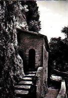 Rieti       H463     Santuario Francescane Del Prespio Greccio.Cella Solidaria De S.Francisco - Rieti