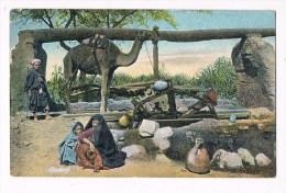 33386 ( 2 Scans ) Egypte Chadouf - Chameau - Camel - Kameel - Egypte