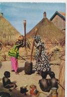 CONGO   - F/G Colore  (51012) - Congo - Brazzaville