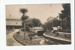 GARDENS INVERCARGILL N Z (230)     1908 - New Zealand