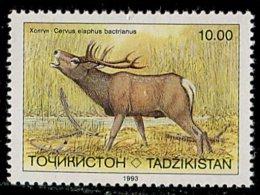 (cl.11 - P.55) Tadjikistan ** N° 13 (ref. Michel Au Dos) - Cerf - - Tajikistan
