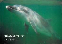 B16-0011 :   LE DAUPHIN JEAN-LOUIS CLEDEN CAP SIZIN - Dauphins