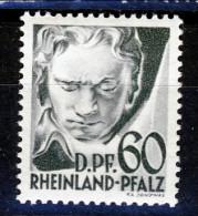 Germania Occupation Française RHEINLAND 1948 N. 27 Dp. 60 Grigio MNH Catalogo € 15,50 - French Zone