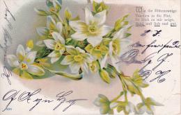 AK Blumen - Wie Die Blütenzweige - Poesie - 1901 (20967) - Blumen