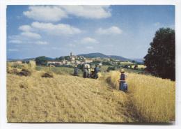 69 - MONTROTTIER - SCENE AGRAIRE - MOISSON - MOISSONNEUSE - VOIR ZOOM - BON ETAT - France