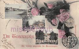 47 - TONNEINS  - Multivues - Je Vous Envoie Le Souvenir De...  - Roses - 1907 - 2 Scans - Tonneins