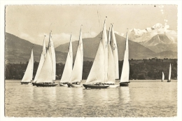Cp, Voile, Lac De Genève, Régates à Voiles Et Le Mont Blanc, Voyagée - Voile