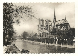 Cp, 75, Paris, Notre Dame De Paris - Notre Dame De Paris